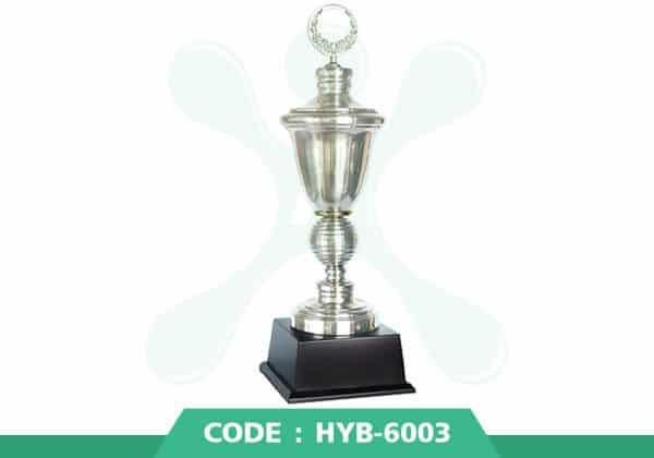 HYB 6003 ปก - รับผลิตเหรียญรางวัล โล่รางวัล ถ้วยรางวัล