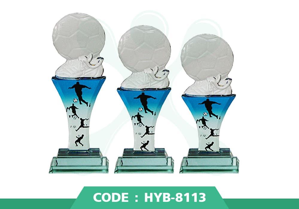 HYB 8113 ปก - รับผลิตเหรียญรางวัล โล่รางวัล ถ้วยรางวัล