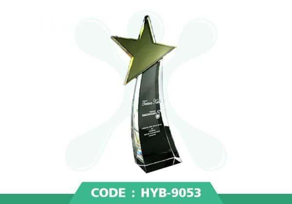 HYB 9053 ปก - รับผลิตเหรียญรางวัล โล่รางวัล ถ้วยรางวัล